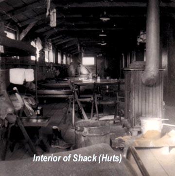 interiorshack.jpg
